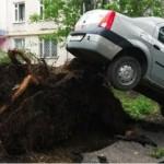 Ураган в Москве 29 мая 2017 года: почему не все получили предупреждение МЧС