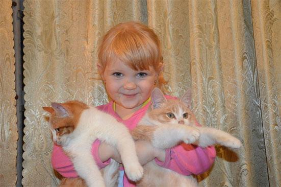 Будет ли налог на домашних животных в России в 2020 году