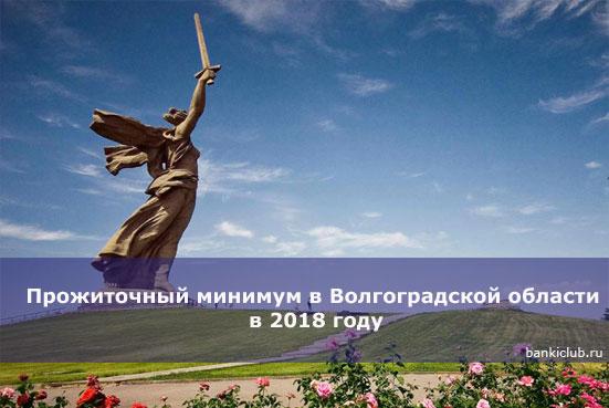 Прожиточный минимум в Волгоградской области в 2020 году