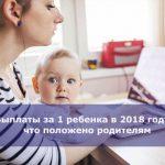 Выплаты за 1 ребенка в 2018 году — что положено родителям