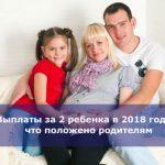 Выплаты за 2 ребенка в 2018 году — что положено родителям