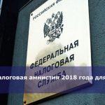 Налоговая амнистия 2018 года для ИП