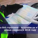 Езда без страховки — вступили ли в силу новые правила в 2018 году