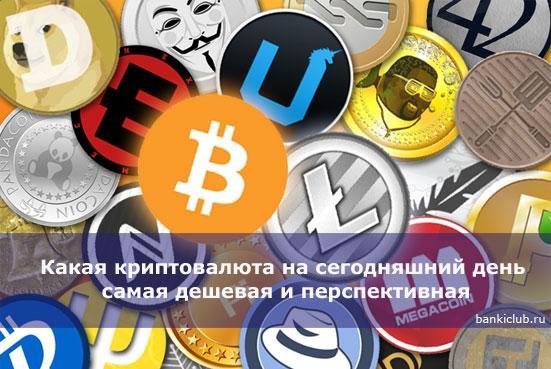 Какая криптовалюта на сегодняшний день самая дешевая и перспективная