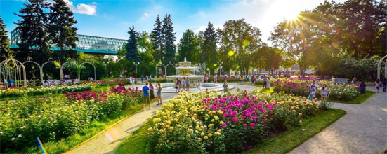 Погода на июнь 2020 года в Москве