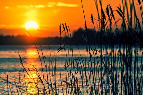 Пляжи Санкт-Петербурга и Ленинградской области: где можно купаться в 2020 году
