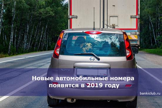 Новые автомобильные номера появятся в 2019 году