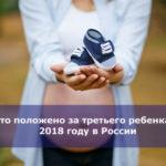 Что положено за третьего ребенка в 2018 году в России
