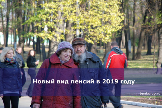 Новый вид пенсий в 2019 году