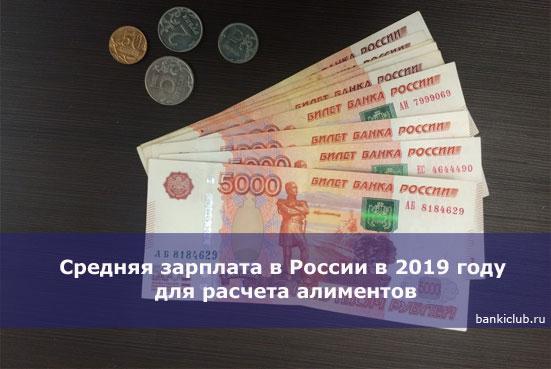 Среднемесячная зарплата для расчета алиментов в 2019 году