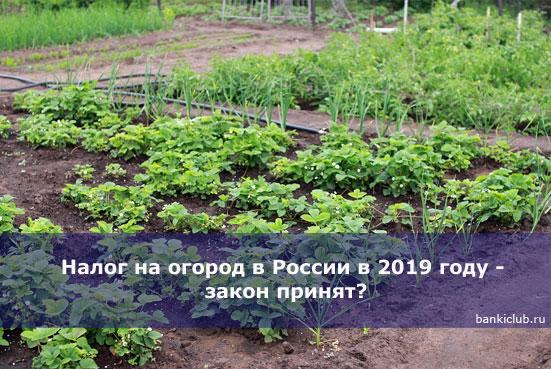 Налог на огород в России в 2019 году - закон принят?