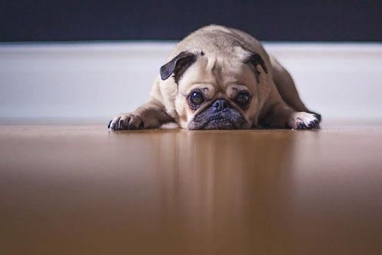 Ипотека 10 важных ипотечных вопросов, которые нужно знать до её оформления