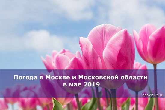 Погода в Москве и Московской области в мае 2019