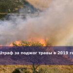 Штраф за поджог травы в 2019 году