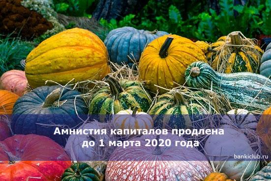 amnistiya-kapitalov-prodlena-do-1-marta-2020-goda