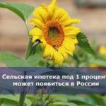 Сельская ипотека под 1 процент может появиться в России