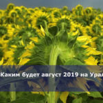 Каким будет август 2019 на Урале
