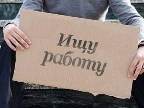 Пособие по безработице в 2017 году в России: условия назначения, размер, сроки выплаты