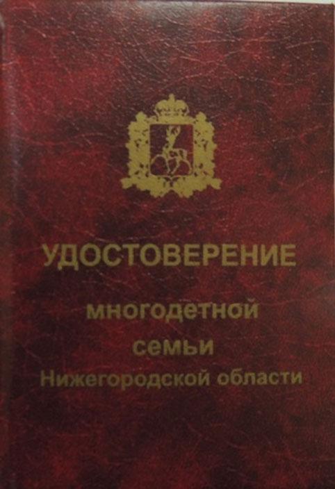 Льготы многодетным семьям в 2020 году в Нижегородской области